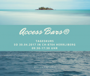 Access BarsTageskurs